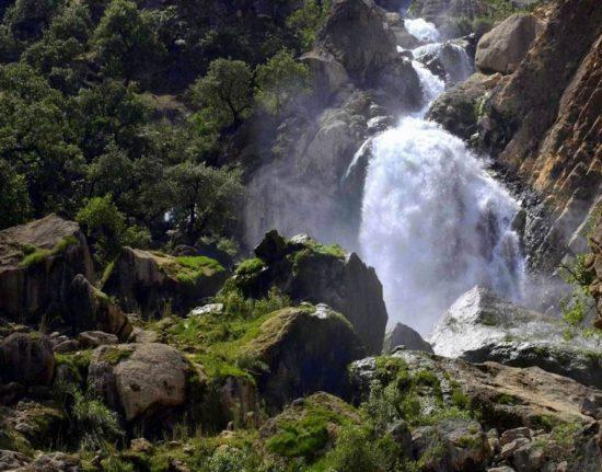 iran przyroda