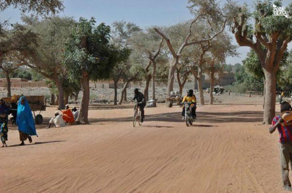 Niger Festiwal Tuaregów