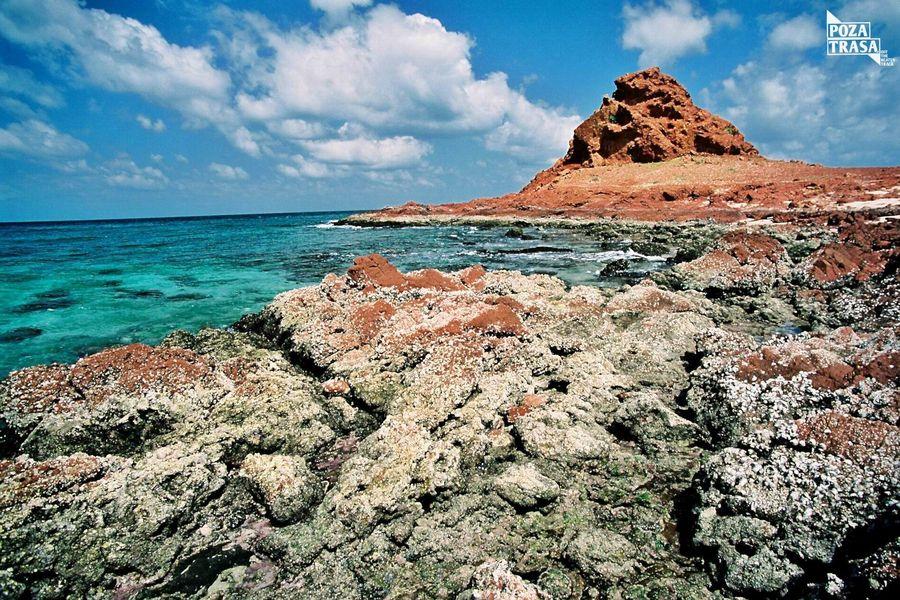 plaże kamieniste Sokotra