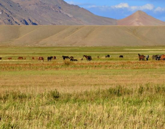 podróż do Kirgistanu