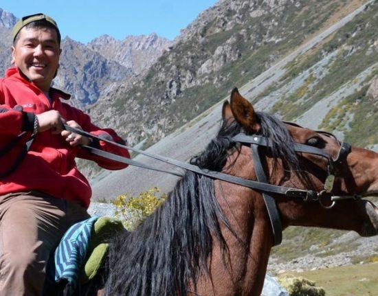 Kirgijskie konie