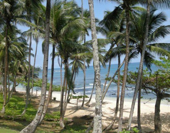 Wyspa Świętego Tomasza