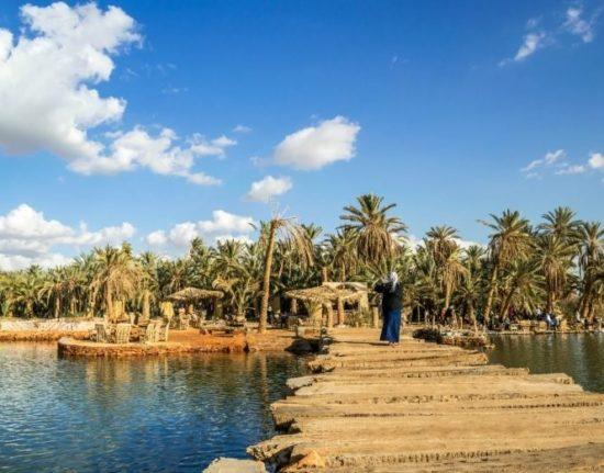 Egipt oaza