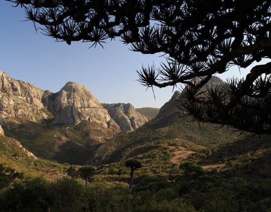 Sokotra pejzaż góry