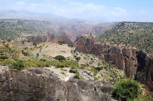 pejzaże Sokotra