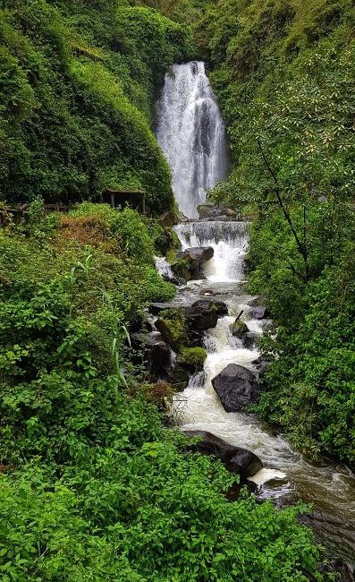 ekwador-peguche