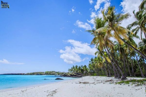 Wyspy Komory Wyjazd