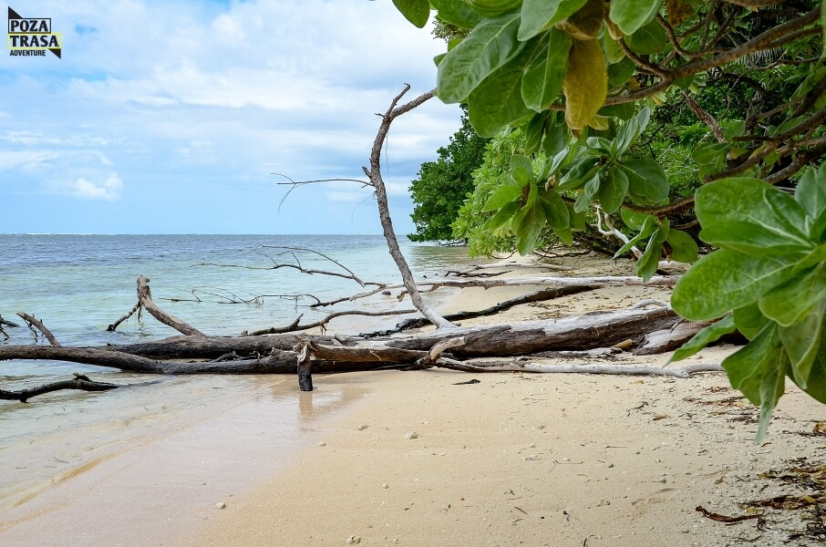 wyprawa Tajwan i PalauTajwan Palau