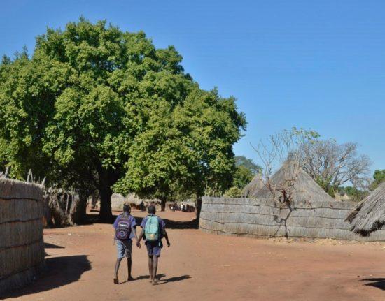 Malawi Zambia Wyjazd Safari