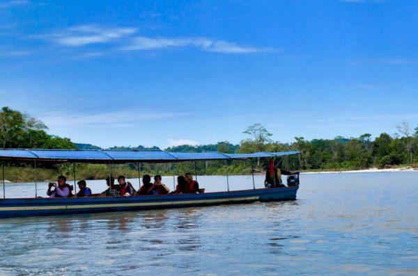 obserwacja ptaków w Amazonii i Mindo