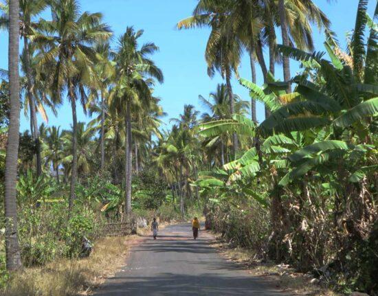 Samoa Tonga