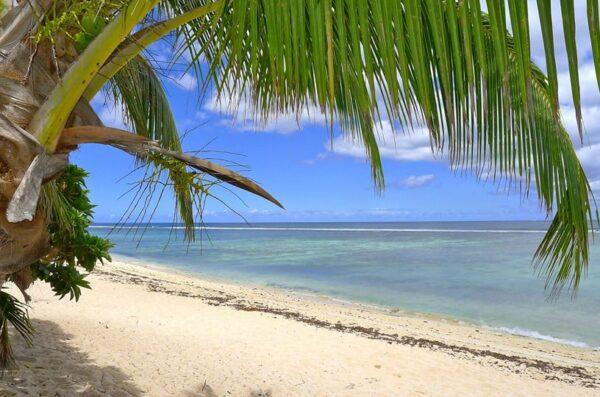 Tonga Samoa Fidżi