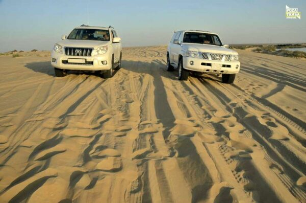 pustynne safari
