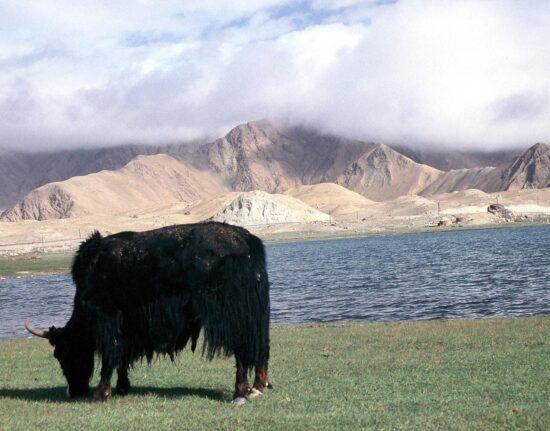 Jeziora w Kirgistanie
