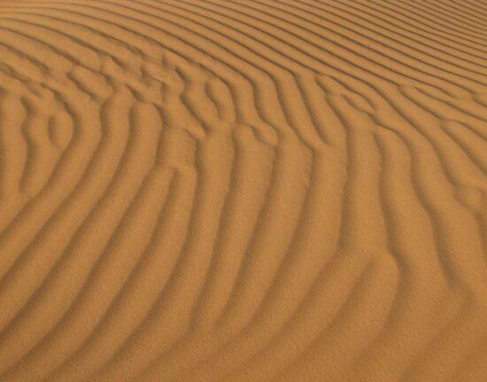 Wyprawa Egipt Sokotra