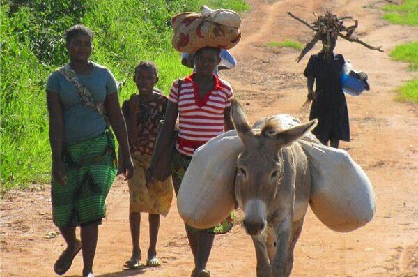 mieszkańcy Afryki wyjazd Mozambik Suazi