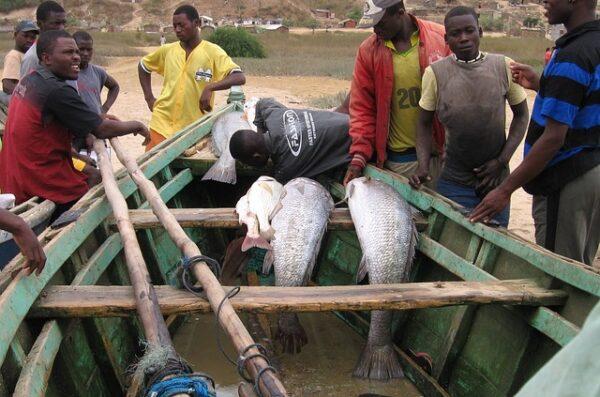 rybacy Angola