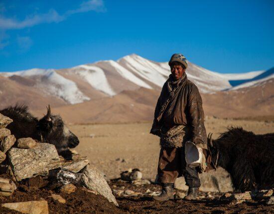 Mongolia wyprawa konno