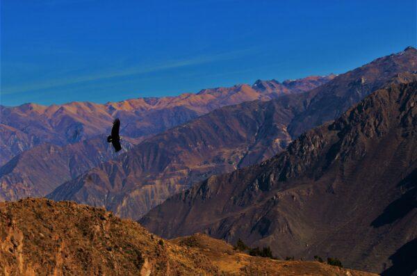 Peru wycieczka