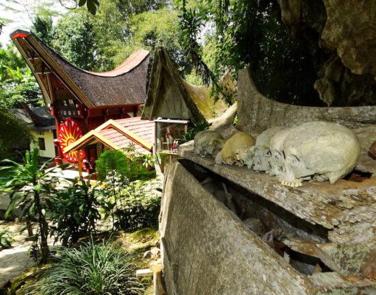 Celebes Toradża (Toraja)