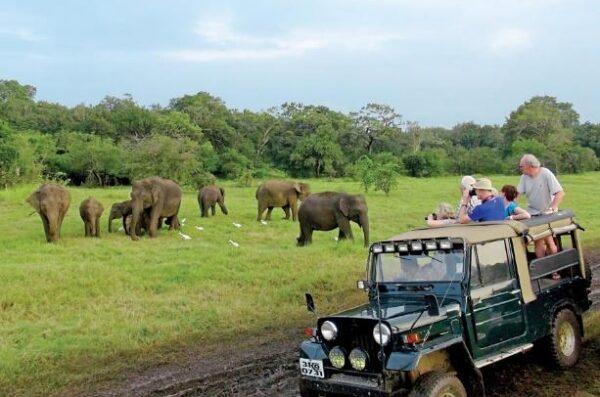 Sri Lanka wyjazd