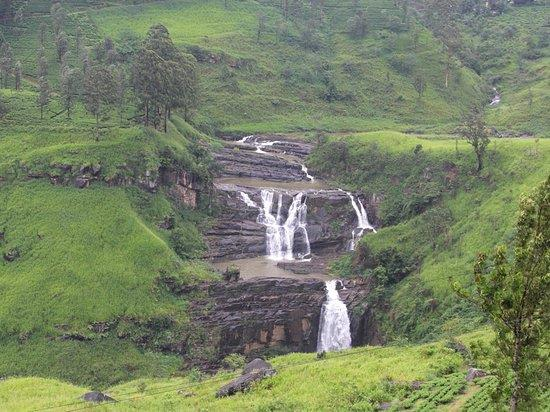 wyjazd na Sri Lankę