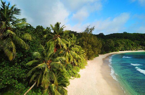 wyjazd na Fidżi