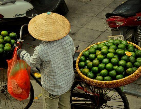 targ Wietnam