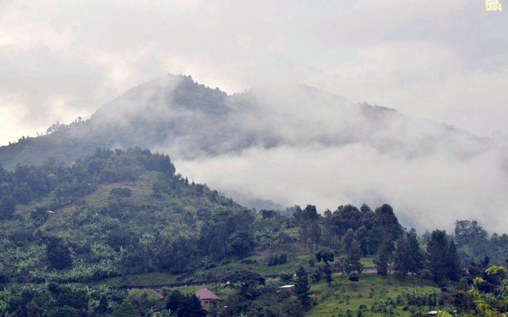 Ruwenzori trekking w Ugandzie