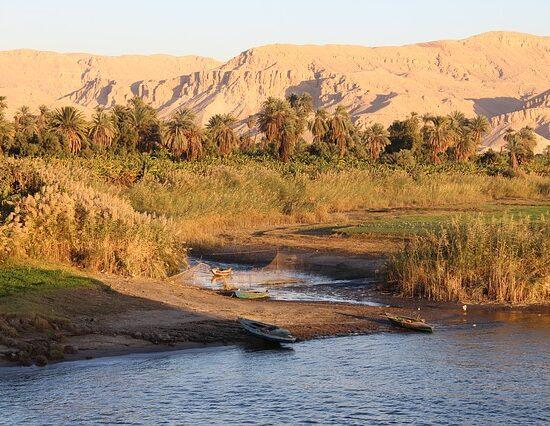 Nil Katarakta