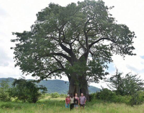 Przyroda Malawi 2021