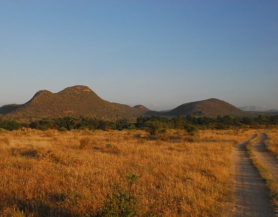 Park Narodowy Samburu