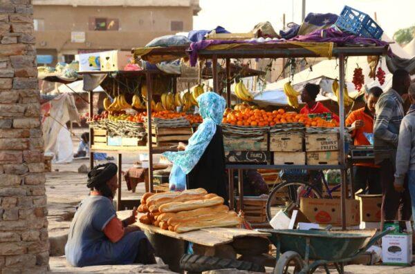 podróż do Mauretanii