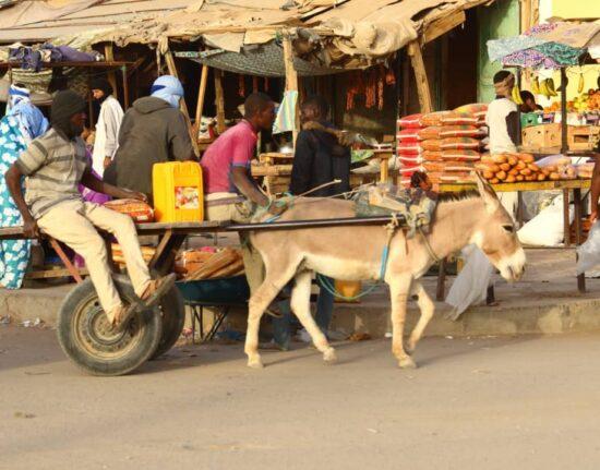 El Beyed w Mauretanii