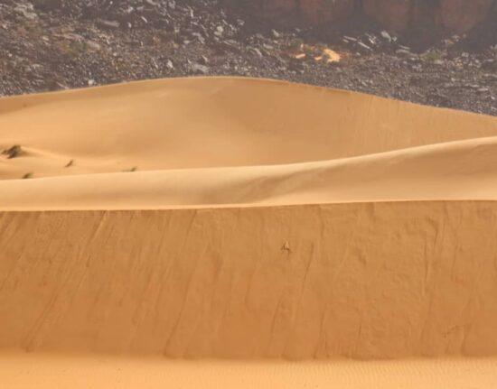 sahara pustyna adrar w Mauretanii